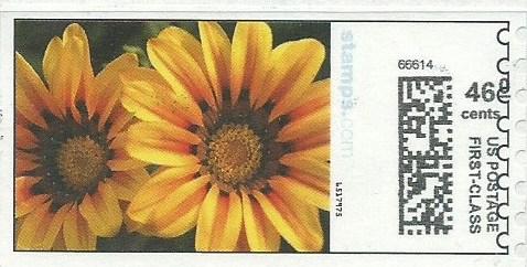 sdc-1704D-V5A-46.0