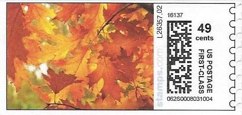 sdc-1707A-V13-49