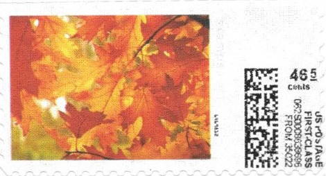 sdc-1707A-V20A-46.5